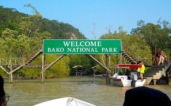 Cómo llegar al parque nacional bako en Borneo