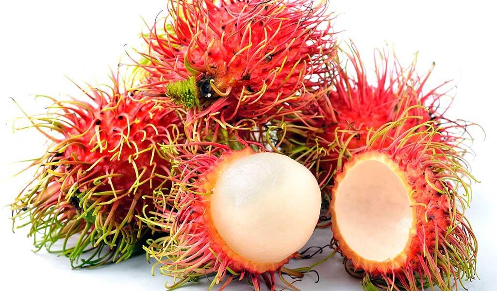 rambutan.fruta.malasia
