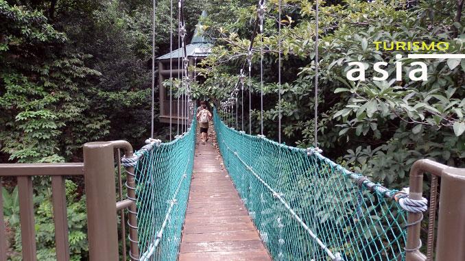 Canopy in Kuala Lumpur