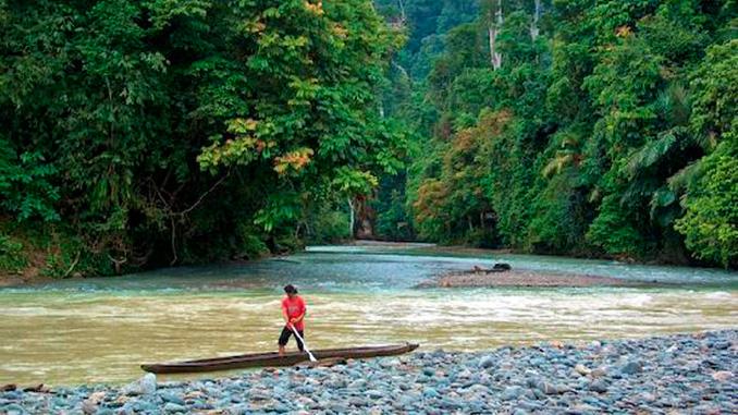Cómo llegar a la isla de Borneo