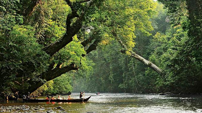 Visitar Taman Negara en la Península de Malasia