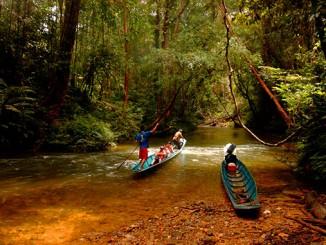 Viajar a Sarawak en Borneo en Malasia