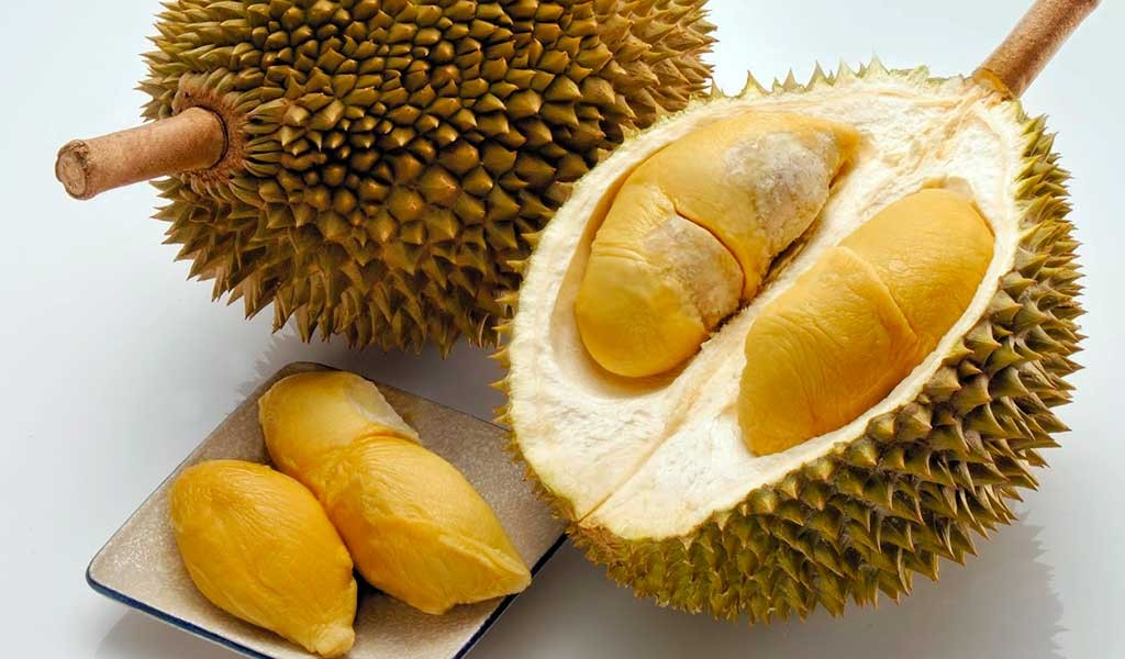 fruto.durian
