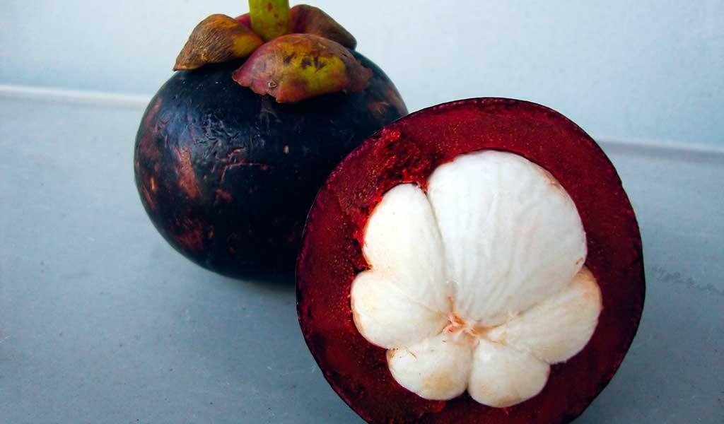 mangostan.fruta
