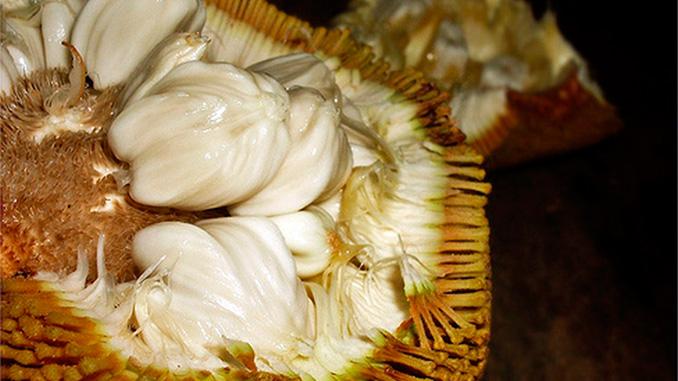 la fruta más dulce de Borneo Buah Tarap