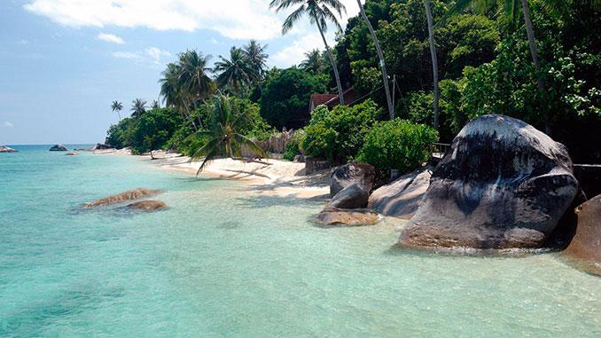 La naturaleza en la isla Tioman