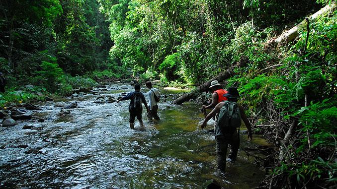 Parque Belum en Perak al recorrer Malasia